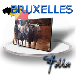 Stages_Bruxelles_feller